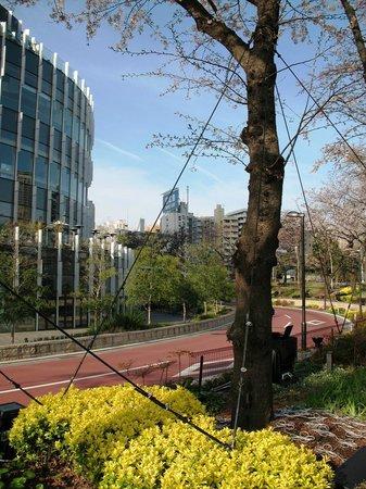 Tokyo Midtown : ...