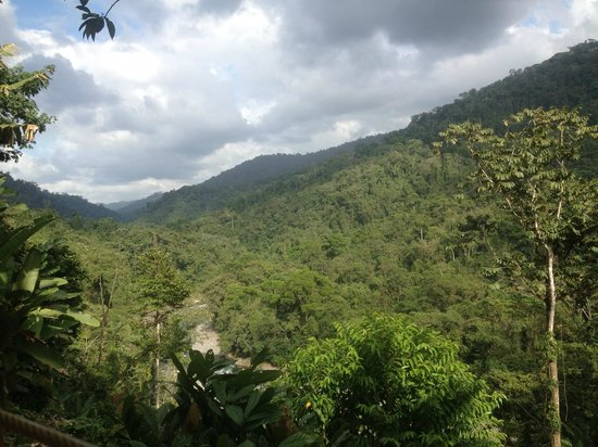 Pacuare Outdoor Center: The view from the hammock
