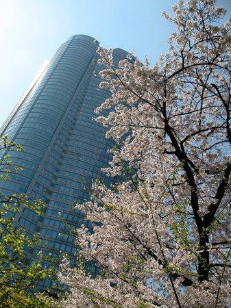 Roppongi Hills, Shop & Restaurant Area : Mori Tower