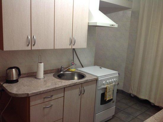 Skapo Apartments: Есть сушка для посуды, много посуды, чашечек, столовых приборов