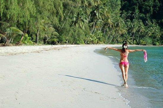 Neverland Beach Resort : пляж днем