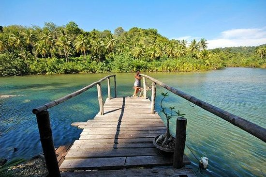 Koh Kood Neverland Beach Resort: Территория