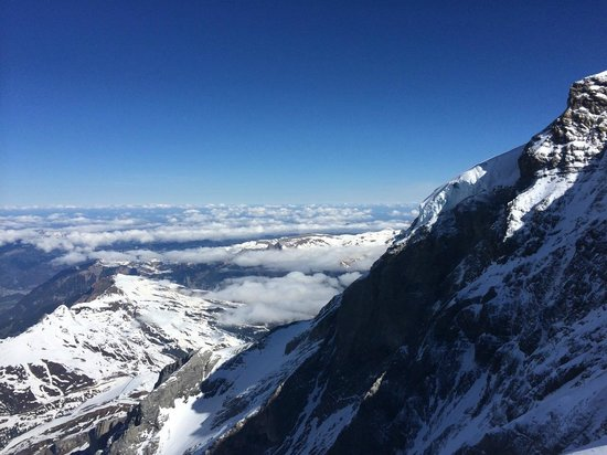 Jungfraujoch : เทือกเขา แอลป์ รอบๆ
