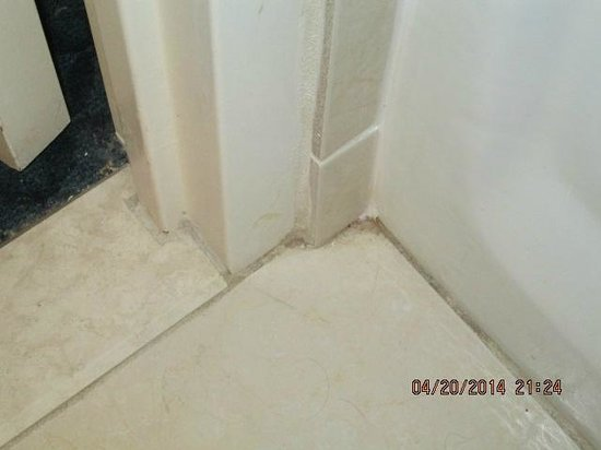 Hilton Daytona Beach Oceanfront Resort : mold on floor