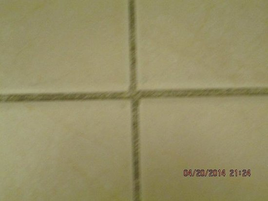 Hilton Daytona Beach Oceanfront Resort : mold on tiles