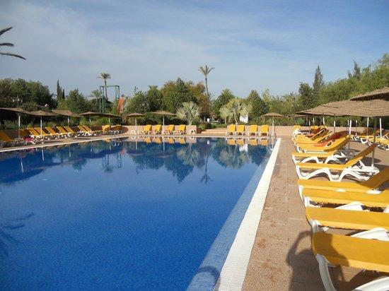 Club Eldorador Palmeraie : piscine