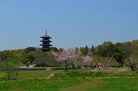 Bicchukokubunji Temple: 備中国分寺