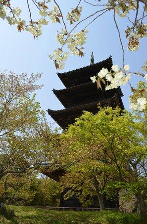 Bicchukokubunji Temple: 五重の塔