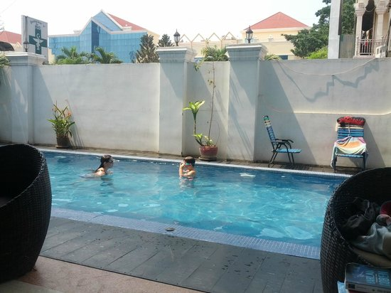 Eighty8 Backpackers: the refreshing pool