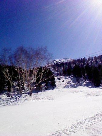 Mt. Asahidake : ロープウェー乗り場からの風景