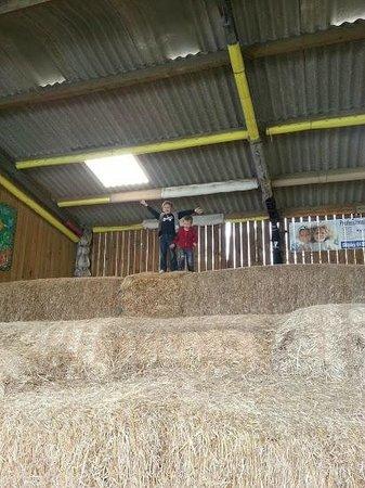 St Leonards Farm Park: Fun times in the straw maze