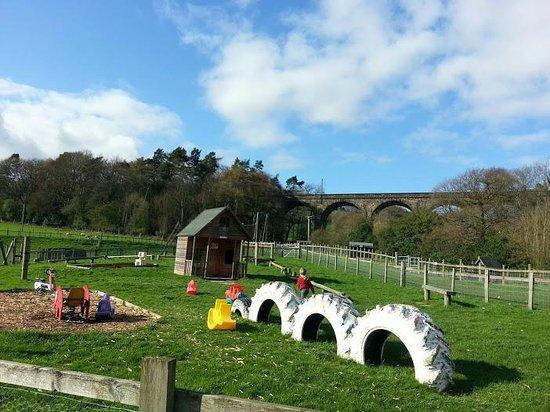 St Leonards Farm Park: fantastic play areas