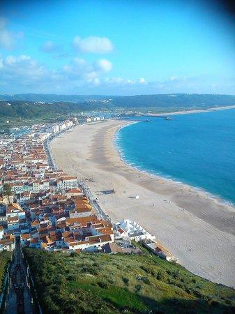 Hotel Mar Bravo: Vista de la playa y del hotel