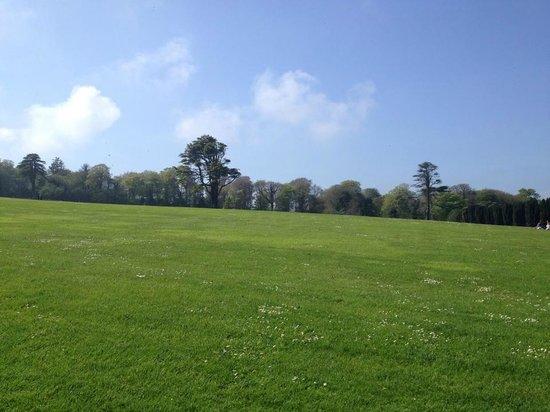 Ardgillan Castle: view of hill heading toward castle