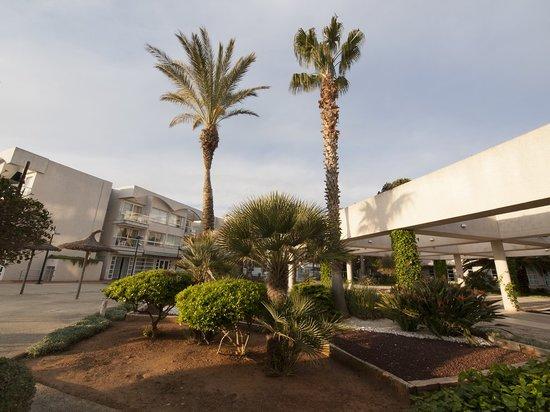 Eix Platja Daurada: jardin