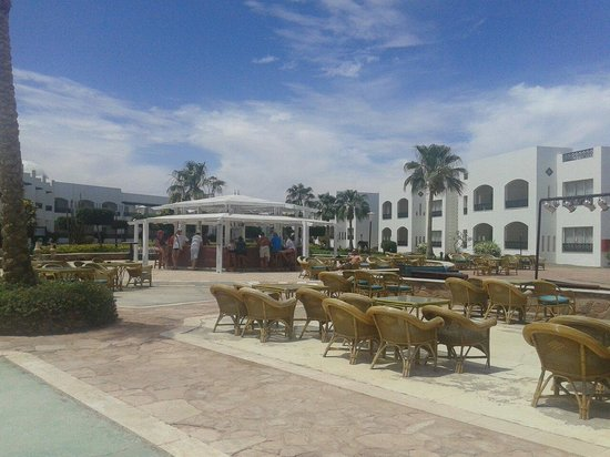 Coral Beach Resort Montazah: Bar piscina