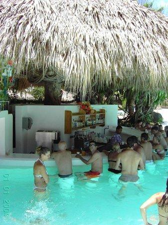 Tropical Princess Beach Resort & Spa : bar