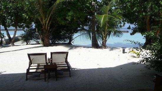Kurumba Maldives: Right outside bungalow