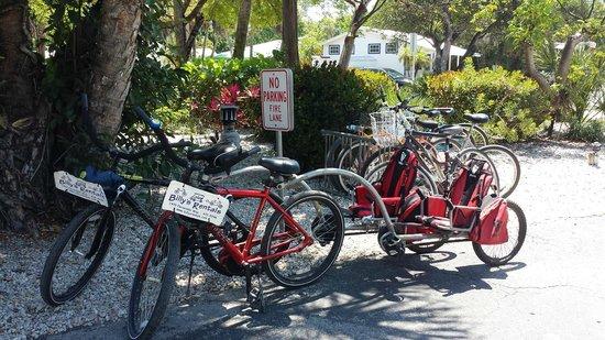 Lazy Flamingo : Bike rack