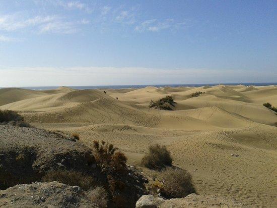 Playa de Maspalomas: Dune di Maspalomas