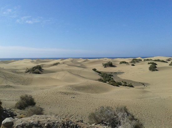 Playa de Maspalomas: Las Dunas