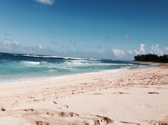 Sunset Beach Park : 差王朝の海は無人です。