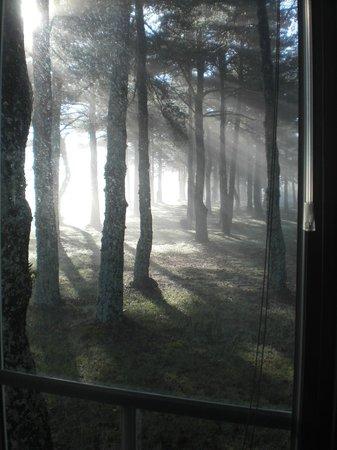 la vue du mobilhome, soleil levant