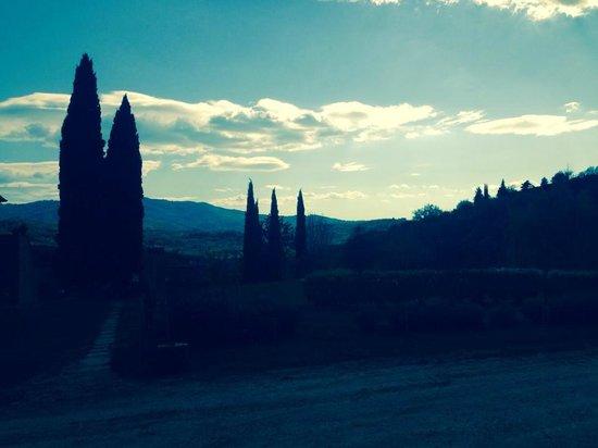 Allegro Agriturismo Argiano: Evening
