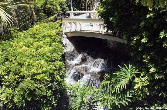 Jardines de Nivaria - Adrian Hoteles: интерьеры отеля