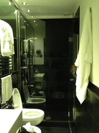 Hotel Napoleon: washroom