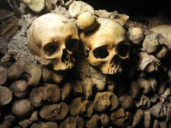 "The Catacombs: Los ""habitantes"" de las catacumbas"