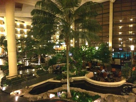 Embassy Suites by Hilton Hotel Phoenix Biltmore: lobby