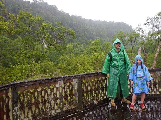 Permai Rainforest Resort: парк Бако