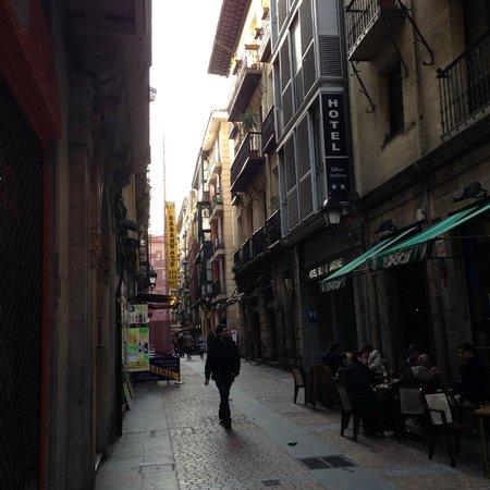 Bilbao Jardines Hotel : Casco Viejo,Jardines通りにある。