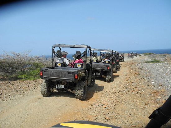De Palm Tours: UTV Tour of Aruba