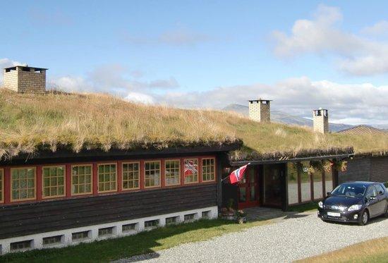 Brekkeseter: 草葺きの屋根