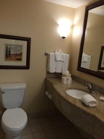 Hilton Garden Inn Gettysburg : Room bathroom