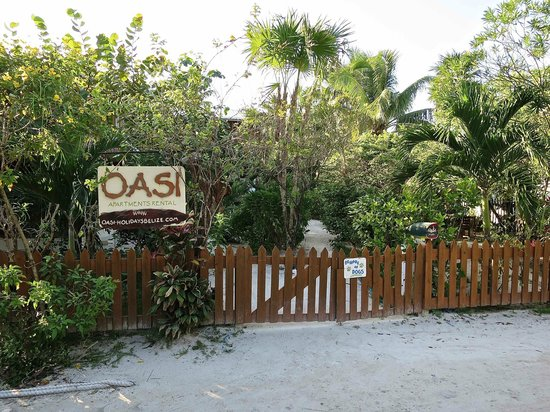 OASI : View from the road
