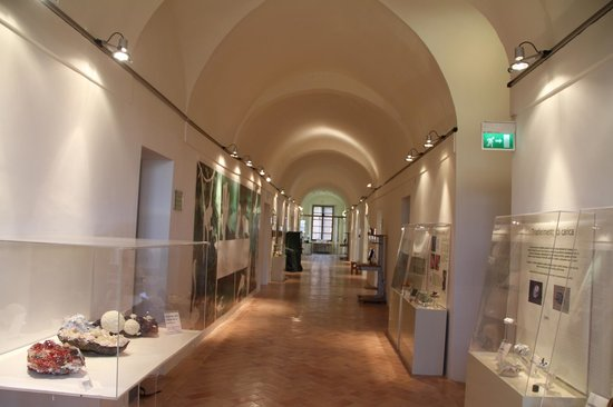 Polo museale Unicam: Interno Museo delle Scienze