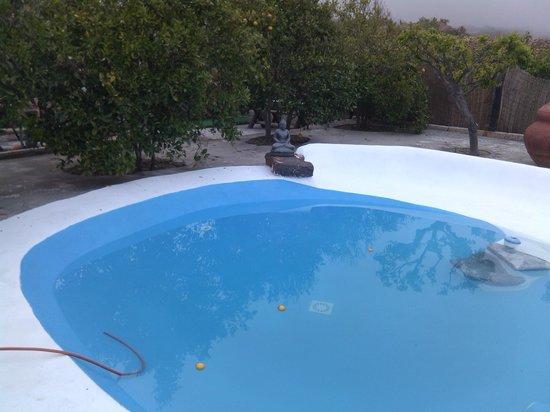 Casas Alberto: La piscina lista para el baño.