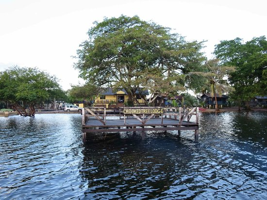 Crooked Tree Lodge: Approach by boat