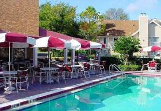 Hawthorn Suites By Wyndham Orlando International Drive: Pool Area