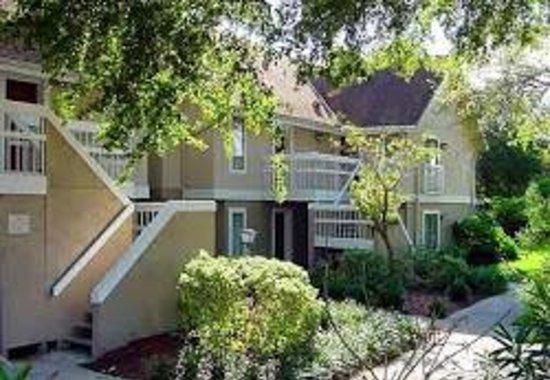 Hawthorn Suites By Wyndham Orlando International Drive: Hotel Grounds 2