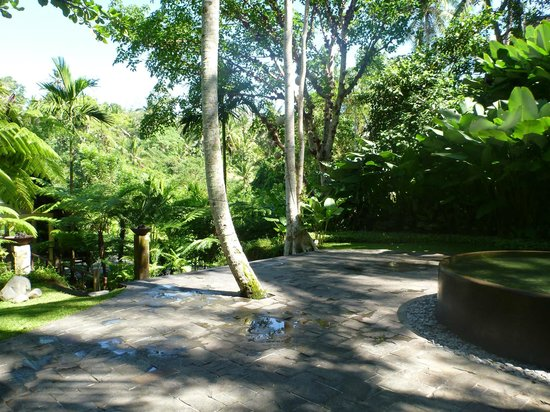 Komaneka at Bisma : The grounds at Komaneka Bisma - immaculate, attention to detail, so relaxing!