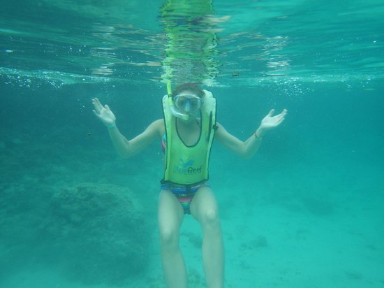 Snorkeling at Dolphin cove