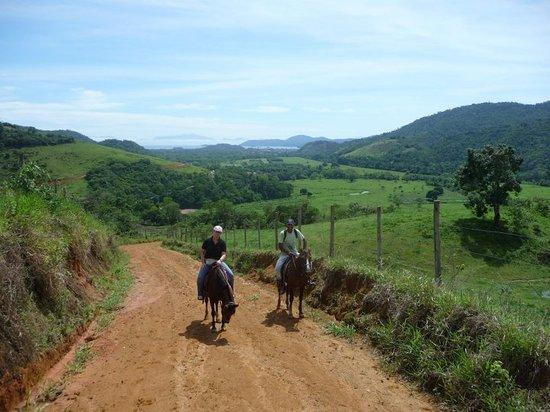 Raul Sampaio Horses4u