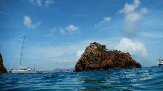 Palm Tree Charters: The Indians (awesome snorkeling spot)
