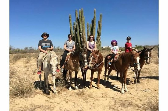 Cabo San Lucas Tours: Family Photo