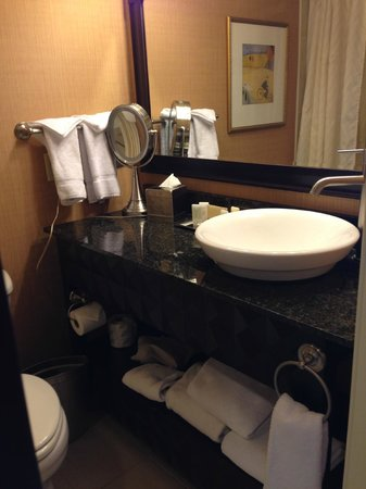 Wyndham Grand Pittsburgh Downtown: Sink Area