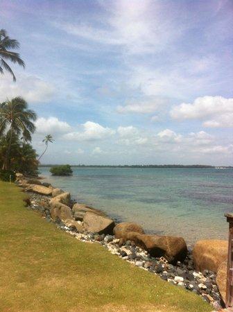 Gran Melia Golf Resort Puerto Rico: beach view